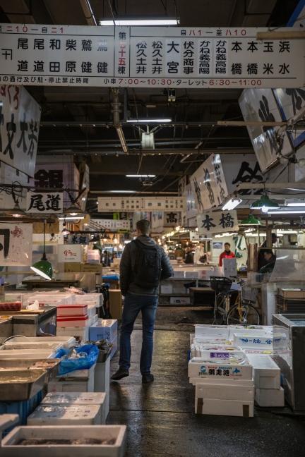 Exploring Tsukiji fish market