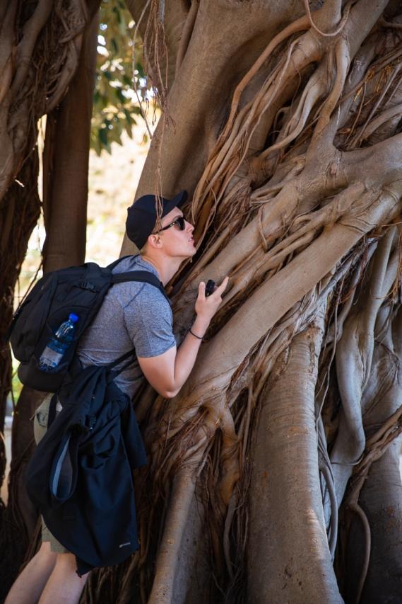 capturing his inner tree man